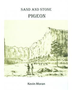 Cover of Sand and Stone Part 3 - Pigeon