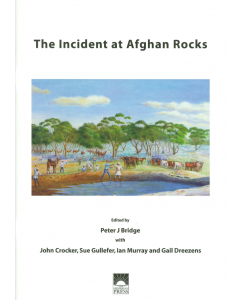 Cover of Incident at Afghan Rocks